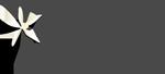 10. logo Vanilla